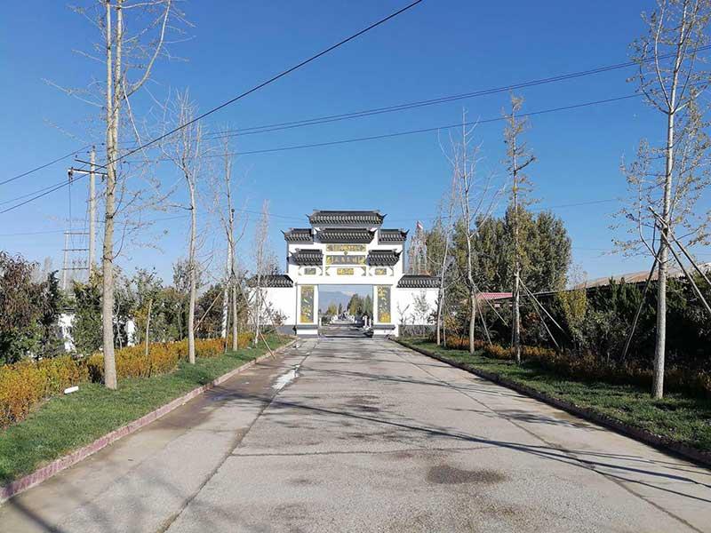 京南卧龙公墓-陵园环境