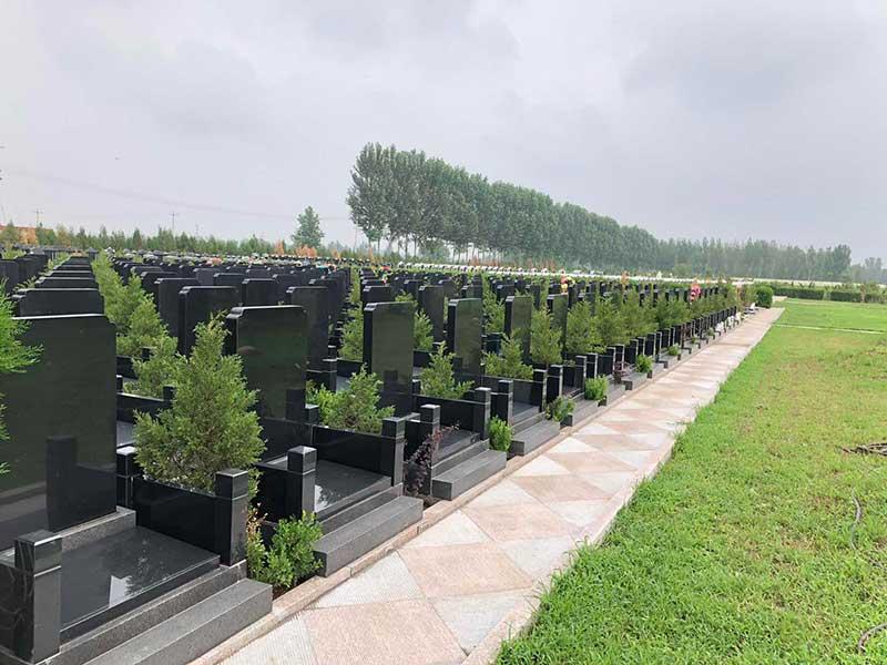 京南卧龙公墓-墓区景观